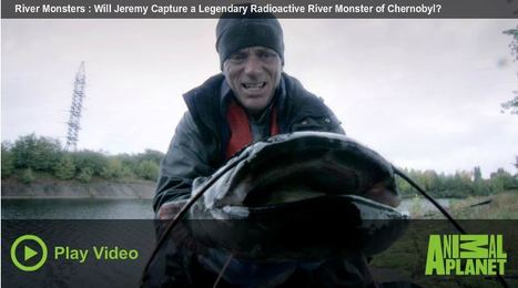 Jeremy Wade - Fishing For Mutated Monster Fish In Contaminated Chernobyl Waterways | Sinica Geography 400 | Scoop.it