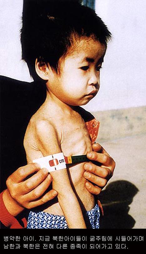 North Korean children close to starvation while the elite prosper   North Korea   Scoop.it