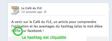 Utile ! Le hashtag #fle permet de classer et de rechercher l'information FLE sur facebook | Le français au CIEL | Scoop.it