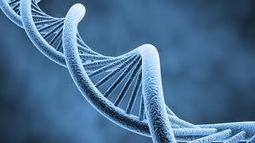 WriterRaja: Genetic Disorders | Health | Scoop.it