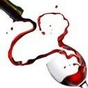 Création de site pour viticulteur | Création de site internet Montpellier | Scoop.it