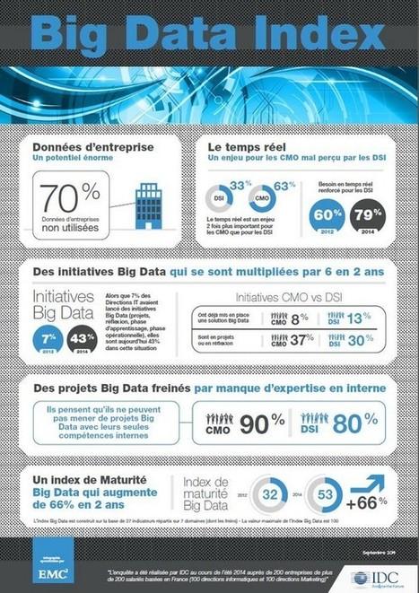 Les initiatives Big Data ont été multipliées par 6 en 2 ans en France selon le «Big Data Index» de EMC et IDC - Offremedia | Infographies divers et variées.... | Scoop.it