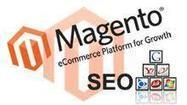 Magento Paving the Way for Ensuring Better ROI   Magento Authority   Scoop.it
