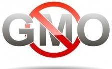 Kellogg, Pepsi, Kraft & Coke Drop GMOs in Europe, but Stay in USA | regulación biotecnología | Scoop.it