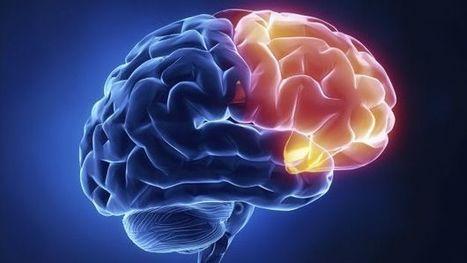 Seis consejos para preservar tu poder mental - BBC Mundo | Aprendiendo Ingles con Español | Scoop.it
