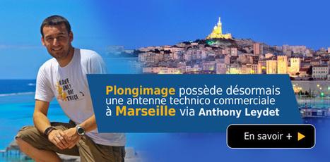 Actualités - Plongimage.com   photo sous-marine   Scoop.it