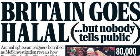 Gran Bretagna, si discute su messa a bando della macellazione rituale | The Matteo Rossini Post | Scoop.it