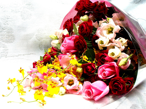 Myfloralkart.com launches Same Day Special Flower Delivery Service   Myfloralkart.com   Scoop.it