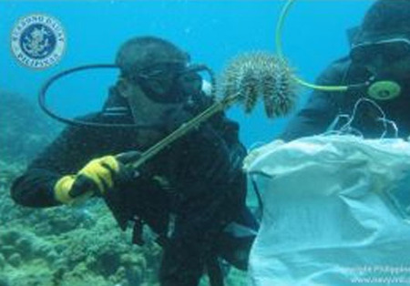 The Philippines: Navy #Divers Participate in #Underwater Clean Up ... | Rescue our Ocean's & it's species from Man's Pollution! | Scoop.it