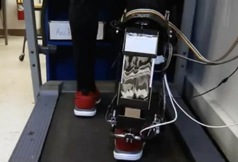 Augmenting humans with an electroadhesive boost: An ankle exoskeleton charges ahead | Tech Trends and Industry | Scoop.it