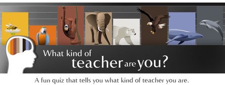 What kind of teacher are you? | Languages, ICT, education | Scoop.it