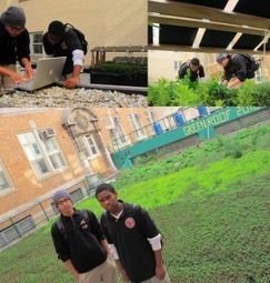 Green Roof Study by South Bronx Students to be Presented at WREF 2012 | American Solar Energy Society | Vertical Farm - Food Factory | Scoop.it
