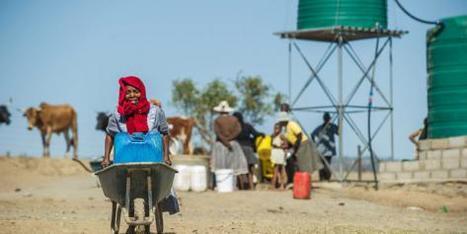 Le réchauffement climatique et la spéculation sont les vecteurs de l'insécurité alimentaire | Questions de développement ... | Scoop.it