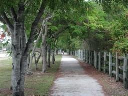 Tavernier Historic Bike Ride   Flagler Centennial Celebration   Best of Florida Outdoors   Scoop.it