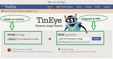 TinEye: búsquedas a partir de una imagen | Estoy explorando | Scoop.it