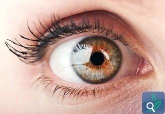 صحة العيون والسكري , الضغط وأمراض الكلى - صحة عامة | أمراض و علاج | Scoop.it