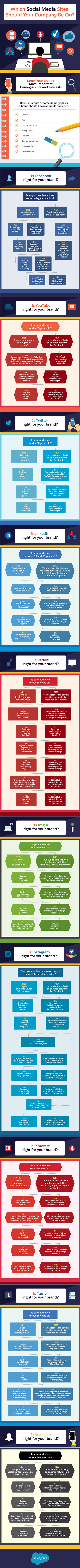 Facebook, Twitter, Reddit, Imgur, Instagram or Pinterest? Which Social Media Sites Should Your Company Be On - #infographic   MarketingHits   Scoop.it