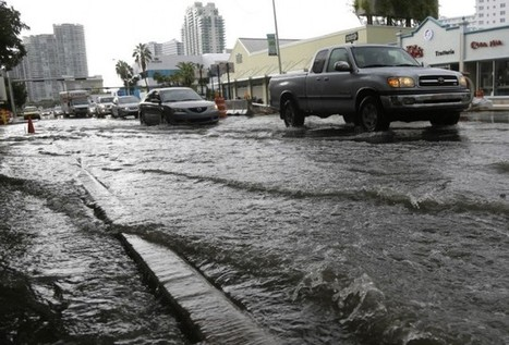 South Florida City Votes To Secede In Last-Ditch Effort To Avoid Being Swallowed By The Sea | Sustain Our Earth | Scoop.it