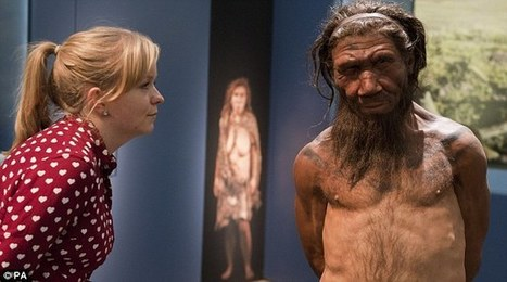 Neanderthals may have been killed off by disease from modern humans | Aux origines | Scoop.it
