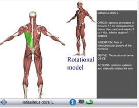 7 Wonderful iPad Apps to Learn about Human Body in 3D ~ Educational Technology and Mobile Learning | Bibliotecas Escolares. Disseminação e partilha | Scoop.it