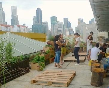 Rooftop food gardens in Singapore — City Farmer News | Cityfarming, Vertical Farming | Scoop.it