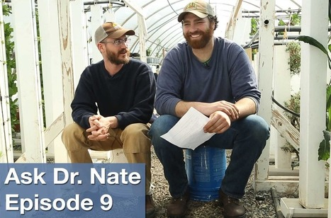 Ask Dr. Nate Episode 9: Growing Indoors - Bright Agrotech | Vertical Farm - Food Factory | Scoop.it