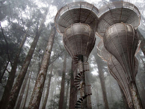 ROOST TREEHOUSE BY ANTONY GIBBON DESIGNS   A AS ARCHITECTURE   Architecture & Gardens   Scoop.it