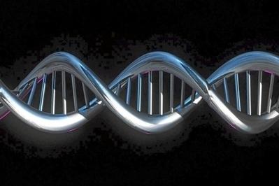 La Corte Suprema de EEUU rechaza que se pueda patentar ADN humano | MOVUS | Scoop.it