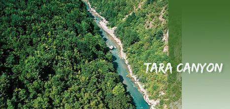 The Tara Canyon (Kanjon Tare) in Montenegro - Via Balkans | Canyoning | Scoop.it