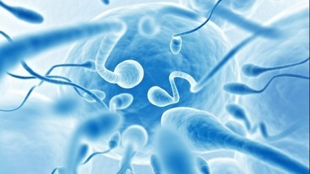 Is ultrasound the future of male contraception? | The Future of Medicine | Scoop.it
