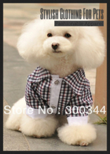 Stylish Clothing For Pets | For The Family | Scoop.it