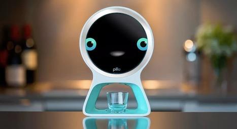 Pillo : un distributeur de pilules intelligent utilisant la reconnaissance faciale et sonore   La technologie au service des âges   Scoop.it