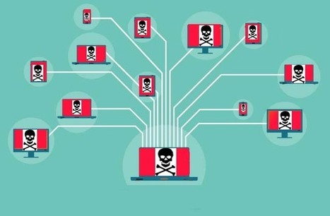 How Botnets work - Guardian Network Solutions | Guardian Network Solutions | Scoop.it