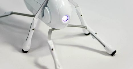 Antbo is a robot insect companion anyone can build   ON-ZeGreen   Scoop.it