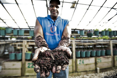 Learning From Urban Farmer and Compost King Will Allen | Vertical Farm - Food Factory | Scoop.it