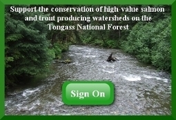 Fish Need Trees, Too - The Tongass: America's Salmon Forest | Fish Habitat | Scoop.it