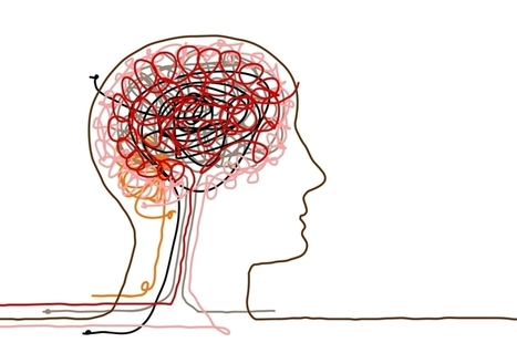 Neuroimaging Identifies Agile Leaders - They are a different species :) | Thriving or Dying in the Project Age | Scoop.it