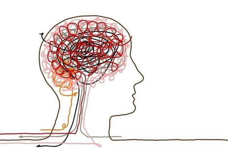 Neuroimaging Identifies Agile Leaders | Wise Leader Group - Psychology in your hands | Wise Leadership | Scoop.it