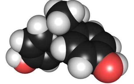 Pour le bisphénol-A, la dose ne fait pas le poison, quelques minutes suffisent | Toxique, soyons vigilant ! | Scoop.it