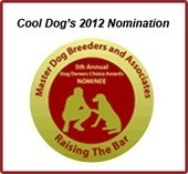 Buy dog cooling mats and dog cooling pads online   Dog cooling mats and dog cooling beds   Scoop.it