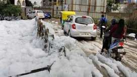 India Bangalore lake of toxic snowy froth - BBC News | Environmental Sciences & Engineering | Scoop.it