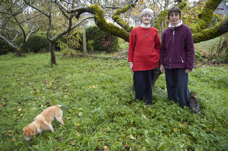 Nuns with a new creed: Environmentalism - Grist | Peer2Politics | Scoop.it