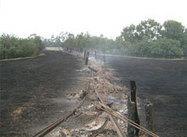Bush Fires in Australia: Risk Reduction and Mitigation Strategies   mowe-it.eu   bushfires in Australia   Scoop.it