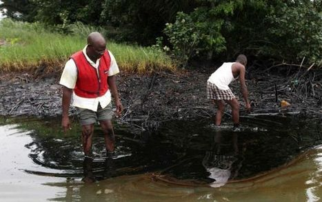 Nigeria, Shell not cleaning oil pollution: report | Sustain Our Earth | Scoop.it