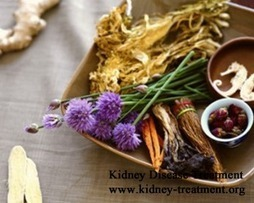 Herbal Medications for Dialysis Patients with Stage 4 Kidney Failure - Kidney Disease Treatment | Santé | Scoop.it