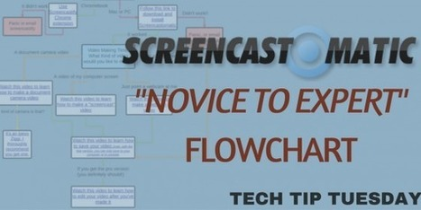 Screencastomatic - Novice to Expert Flowchart - Joel Speranza | Lorraine's Geography  Teaching ideas | Scoop.it