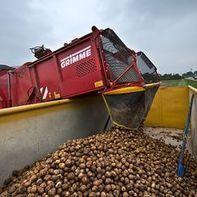 Lebensmittel und Finanzmärkte: Warum wir Spekulanten brauchen   Rohstoff-Links   Scoop.it