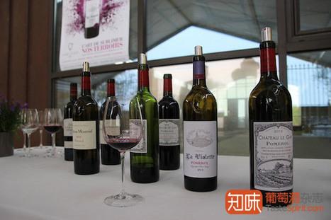 2013波尔多期酒小结:困难年份的自我回归 | 葡萄酒,香槟,维塔贝拉新闻 | Scoop.it