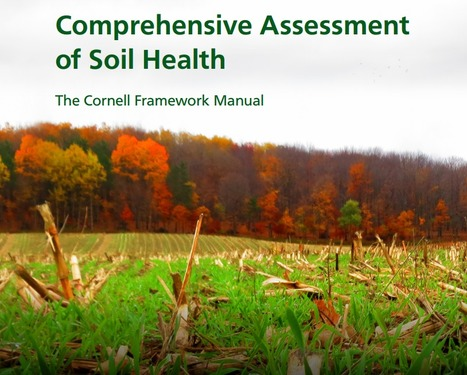 Evaluation globale de la santé du sol - labo Cornell NY | MOF Matière Organique Fugace réactive du sol | Scoop.it
