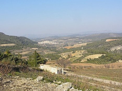Priorat : terre de fous, terre de grands vins   Vins et schistes   Scoop.it